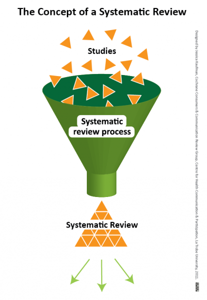 Graphic illustration of the systematic review process